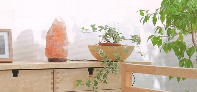 ヒマラヤソルトランプ使用例